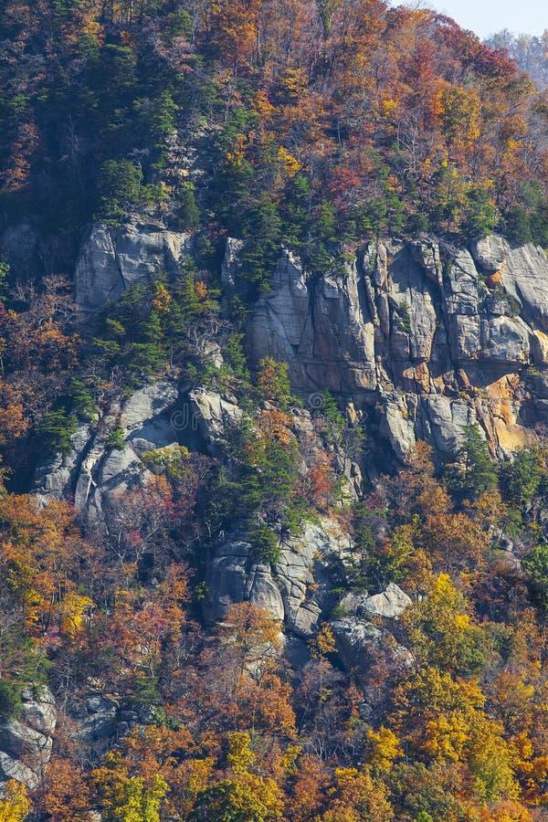 Dalingsgebladerte en rotsachtige klippenkant in Blauw Ridge Mountains van Noord-Carolina stock afbeelding