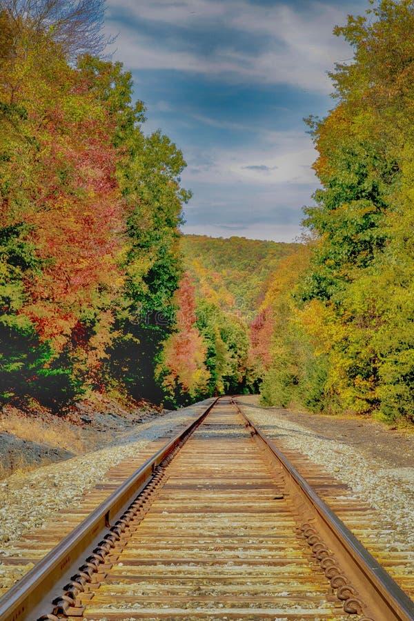 Dalingsgebladerte rond Spoorwegsporen royalty-vrije stock foto