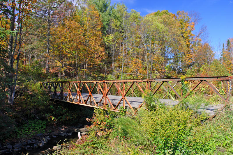 Dalingsgebladerte in Vermont, de V.S. stock foto's