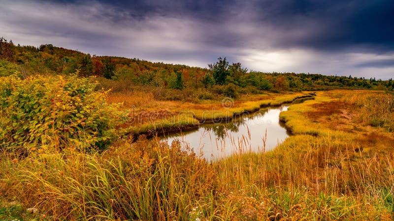 Dalingskleuren Castine Maine royalty-vrije stock foto's