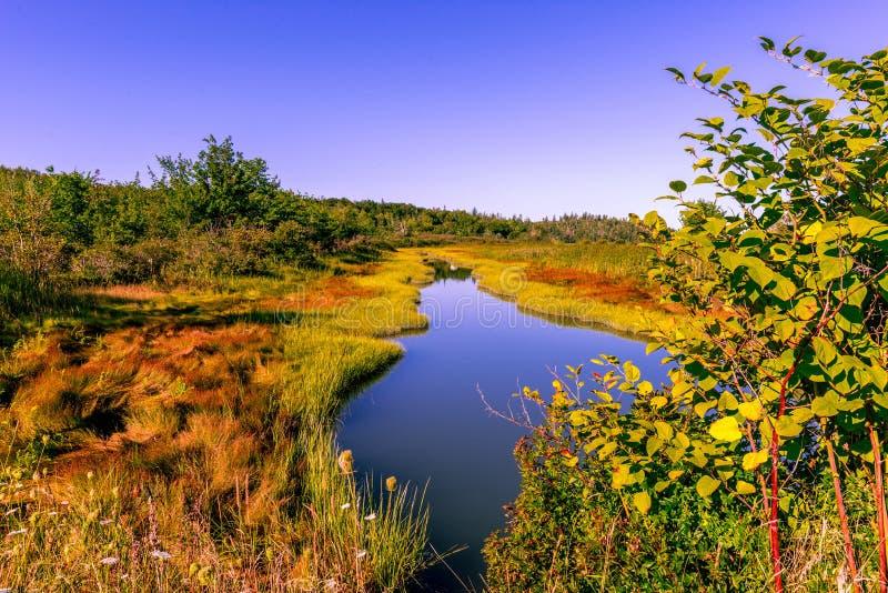 Dalingskleuren Castine Maine stock afbeelding