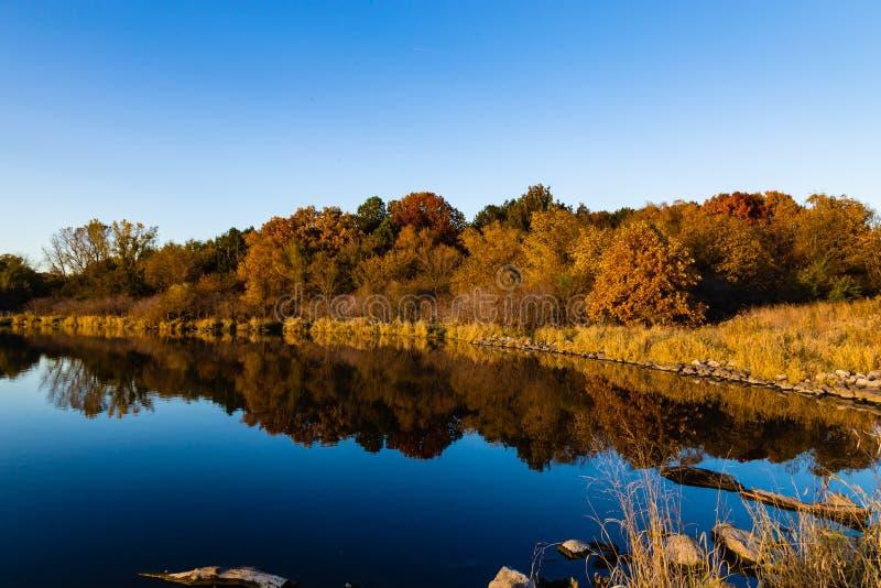 Dalingskleuren in een park met bezinningen in het meer in Omaha Nebraska stock foto's