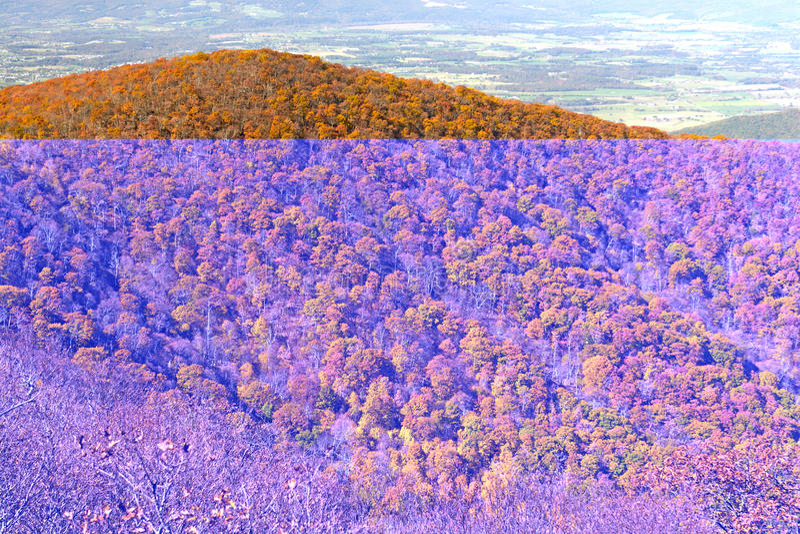 Dalingskleuren op een Appalachian Rand stock foto