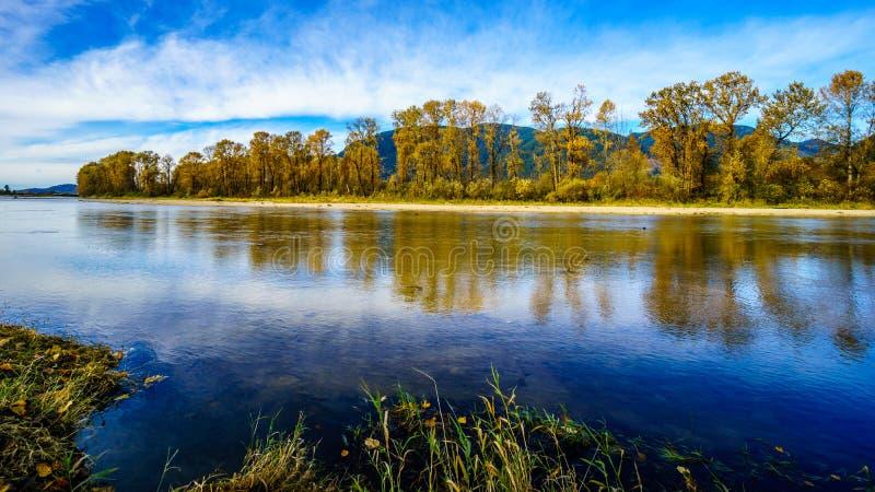 Dalingskleuren rond Nicomen Slough, een tak van Fraser River, aangezien het door Fraser Valley vloeit stock foto's