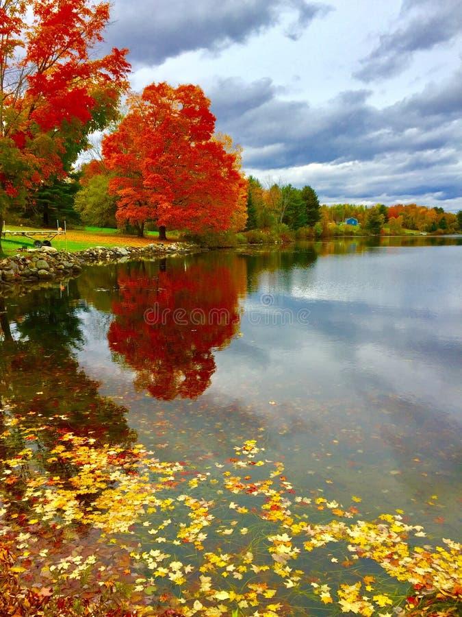 Dalingslandschap op Grote Indische Vijver in Centraal Maine stock fotografie