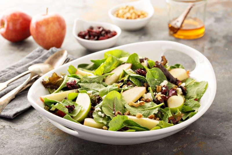 Dalingssalade met de lentemengeling, appel en Amerikaanse veenbes stock afbeelding