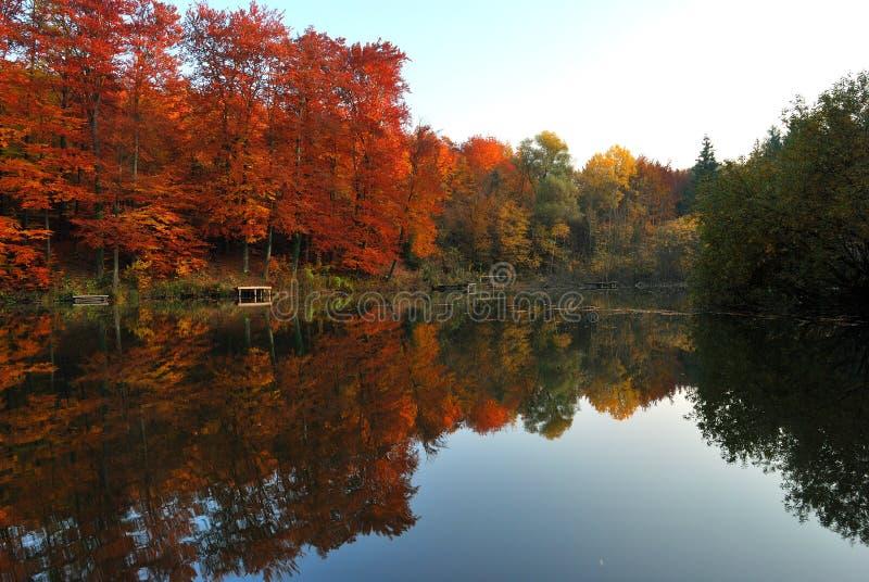 Dalingsscène met Meer en Bomen Autumn Reflection stock fotografie