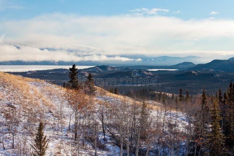 Dalingssneeuw bij het landschap Yukon Canada van Meerlaberge royalty-vrije stock fotografie