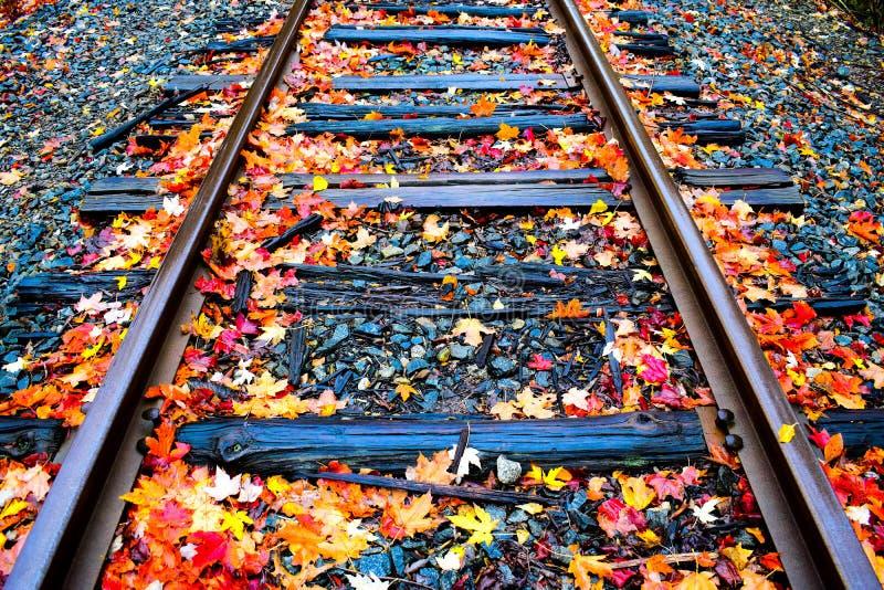 Dalingsspoorweg royalty-vrije stock afbeelding