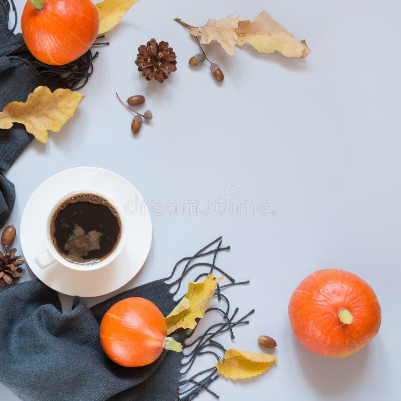 Dalingsstilleven, zwarte koffie, grijze sjaal en pompoen op pastelkleurachtergrond Hoogste mening en exemplaarruimte stock afbeeldingen