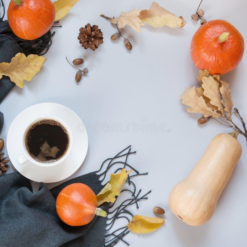 Dalingsstilleven, zwarte koffie, grijze sjaal en pompoen op pastelkleurachtergrond Hoogste mening en exemplaarruimte royalty-vrije stock fotografie