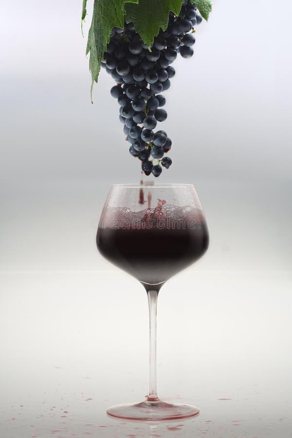 Dall'uva al vetro fotografia stock libera da diritti