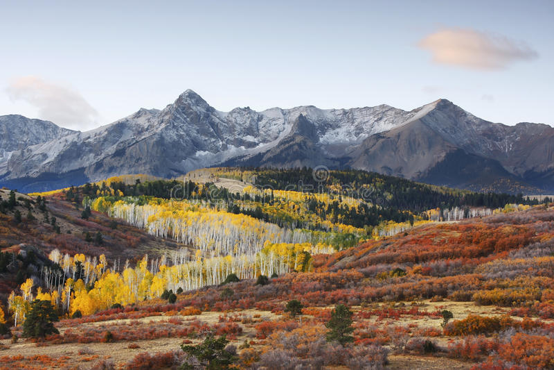 Dallas Divide Uncompahgre nationalskog, Colorado arkivfoton