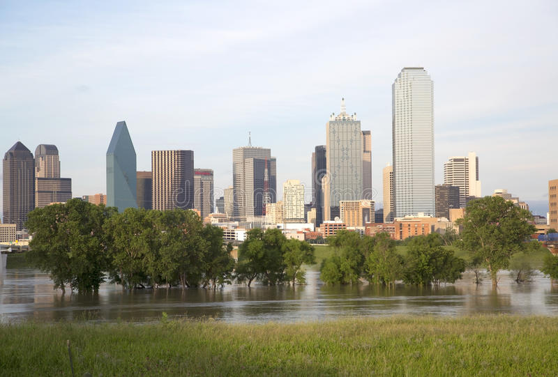 Dallas Skyline imagem de stock royalty free