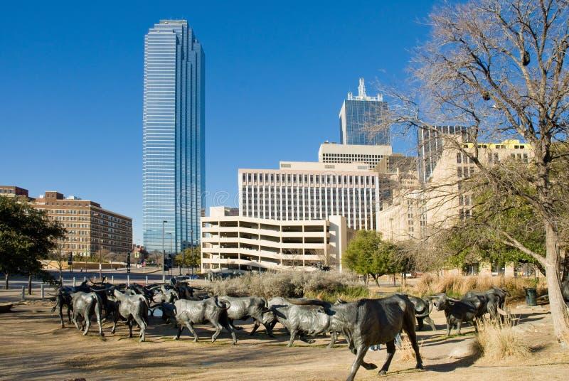 Dallas Texas fotografia de stock