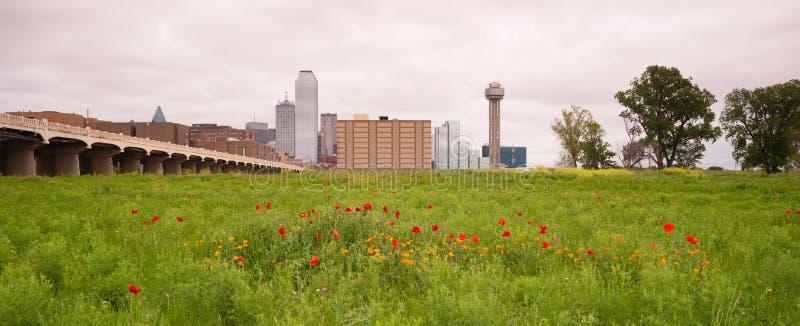 Dallas Texas City Skyline Metro Downtown-Drievuldigheidsrivier Wildflowe stock foto's
