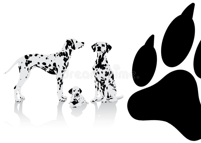 Download Dalmatian dogs background stock vector. Image of pedigree - 28089368