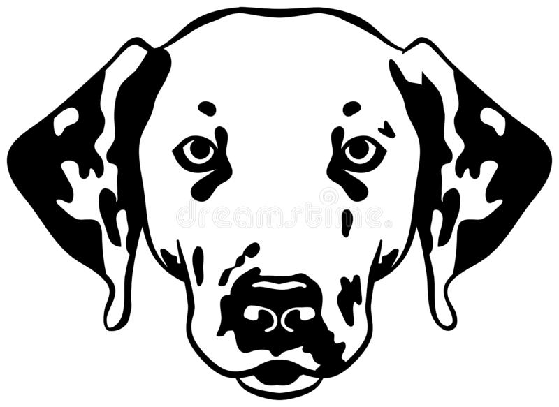 Dalmatian head. Black and white vector illustration