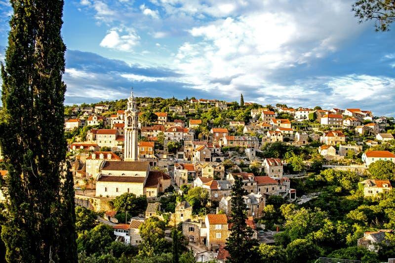 Dalmatian by på ön av Brač arkivfoton
