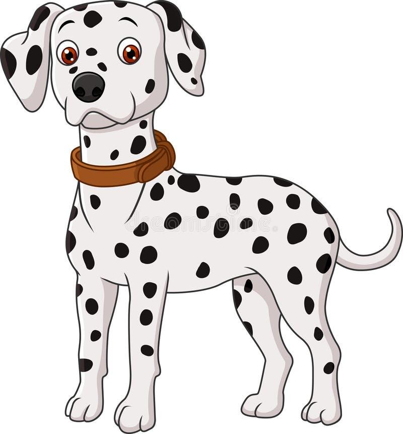 Dalmatinische Karikatur lokalisiert auf weißem Hintergrund lizenzfreie abbildung