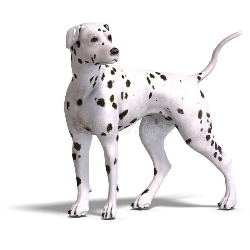 Download Dalmation Dog stock illustration. Image of canine, peering - 15386349