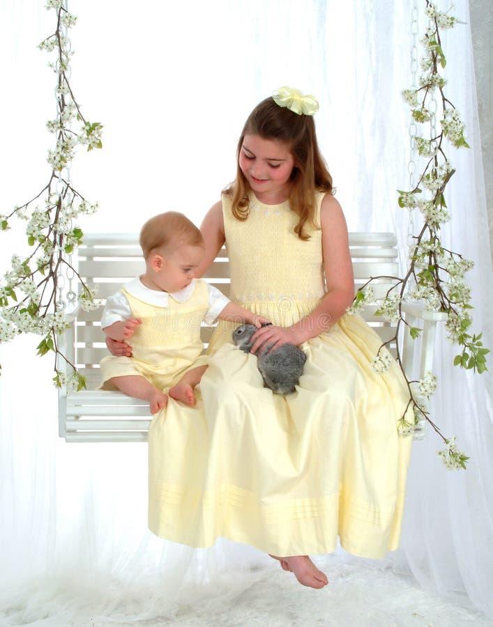 dalta syskon för kanin royaltyfria foton