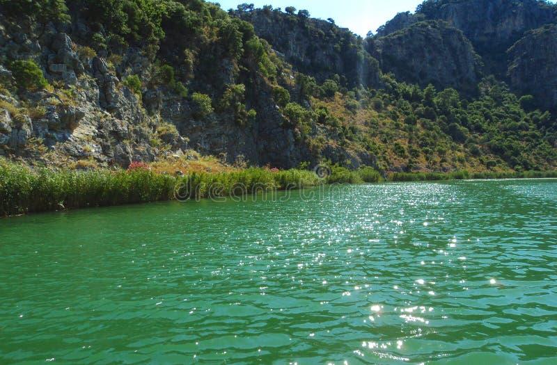 Dalyan Green River стоковое изображение rf