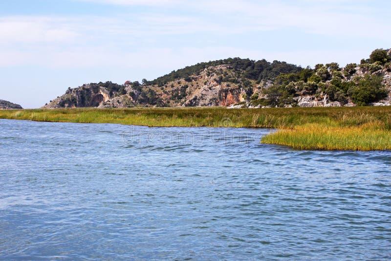Download Dalyan River in Turkey stock image. Image of crocodile - 25720371