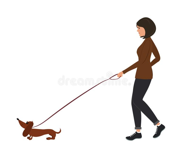 Dam med en hund En ung kvinna leder en taxhund på en koppel royaltyfri illustrationer