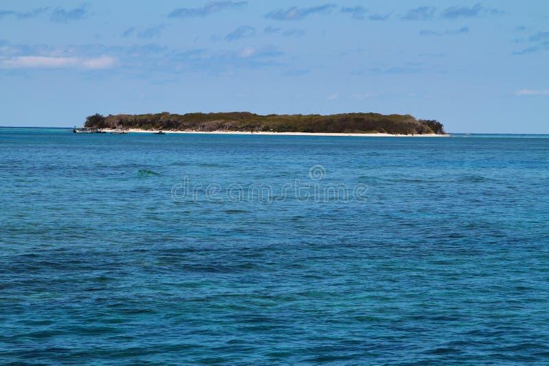 Dam Musgrave Island fotografering för bildbyråer