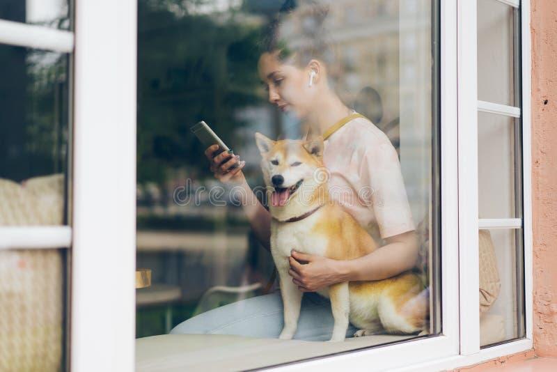 Dam som lyssnar till musik med trådlösa hörlurar genom att använda smartphonen som slår hunden royaltyfria foton