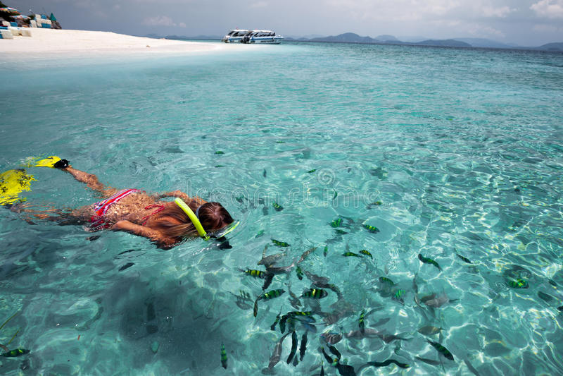 Dama w morzu zdjęcia royalty free