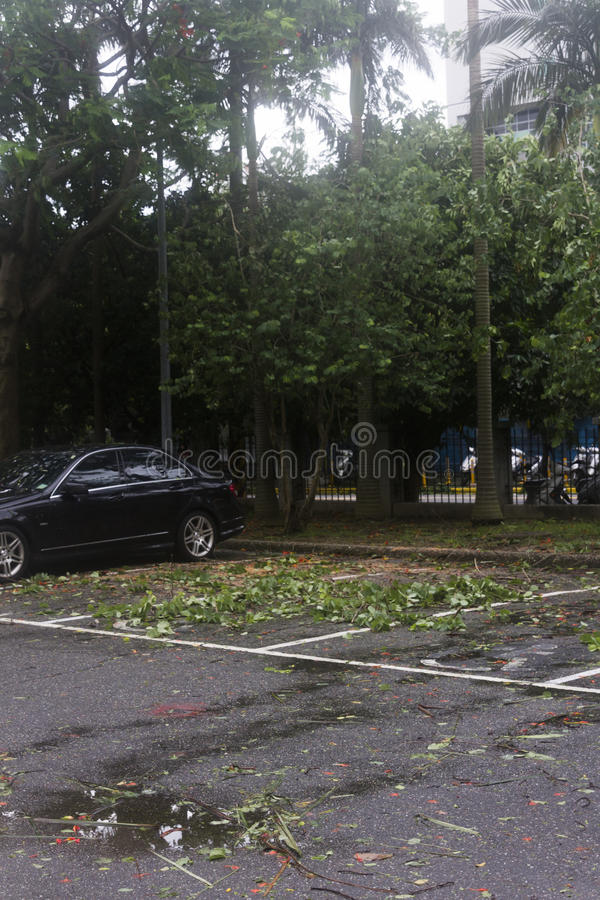 Download Damage Done By The Typhoon Soulik To The Taipei City Editorial Image - Image: 32248635