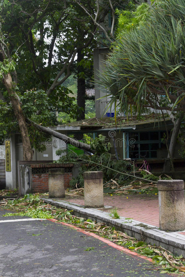Damage done by the Typhoon Soulik to the Taipei city