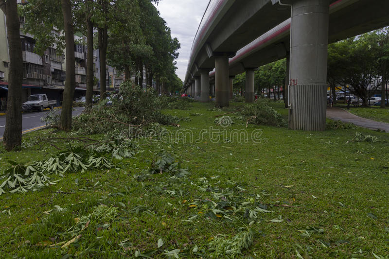 Download Damage Done By The Typhoon Soulik To The Taipei City Editorial Image - Image: 32249090