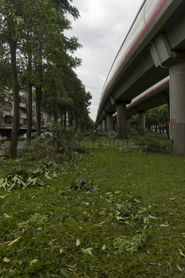 Download Damage Done By The Typhoon Soulik To The Taipei City Editorial Photo - Image: 32249126