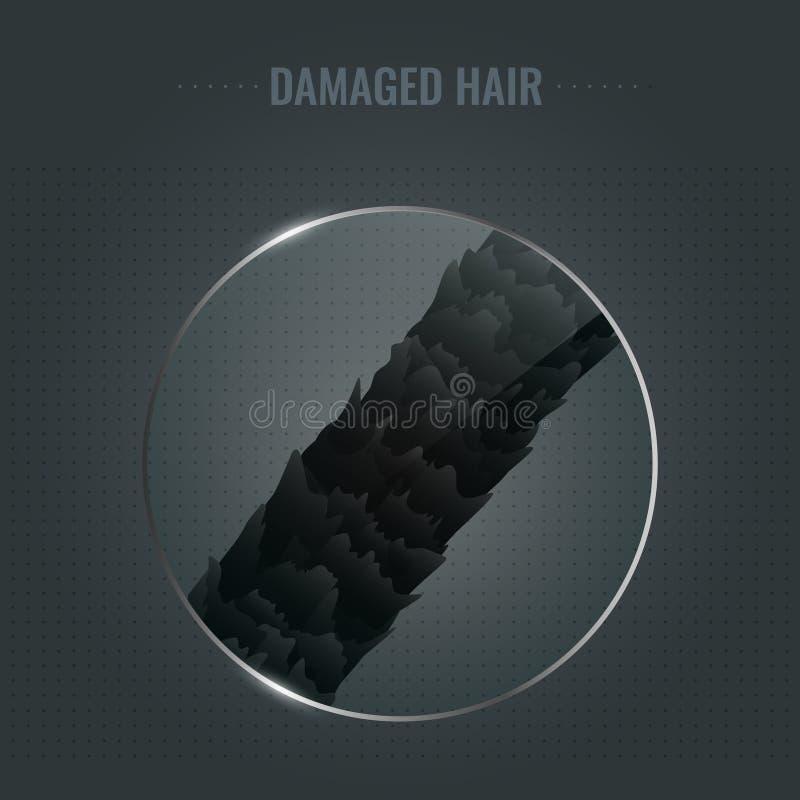 Damaged hair surface royalty free illustration