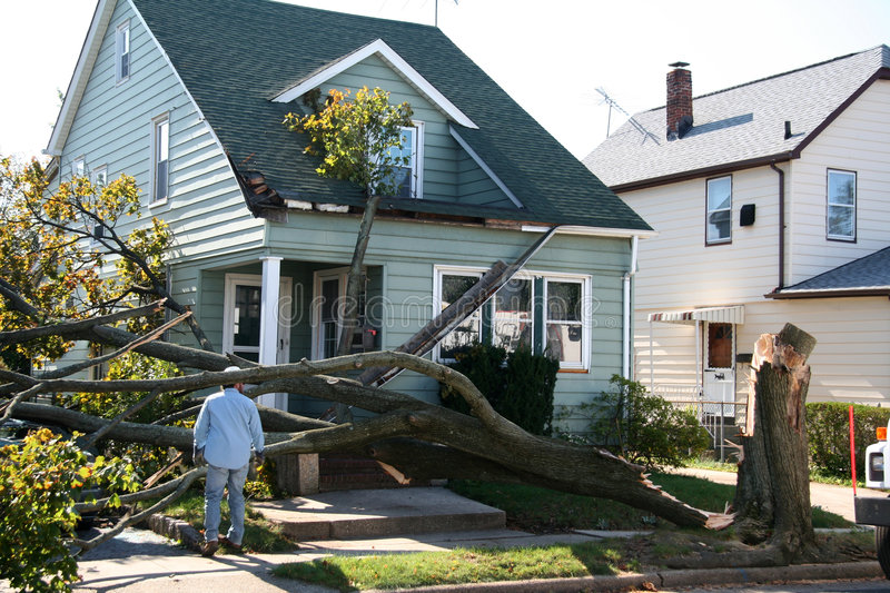 Damaged House from Tree stock images