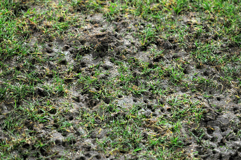 Download Damaged pitch stock photo. Image of football, yard, plant - 27783394