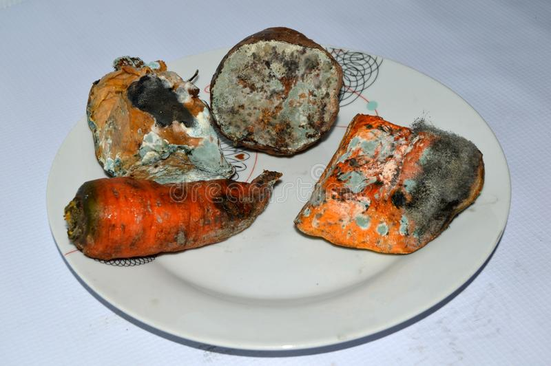 Damaged vegetables. Inedible on a plate , pieces of vegetables damaged by fungi, shabby, unfit for human consumption. Pumpkin , taro and carrot stock image