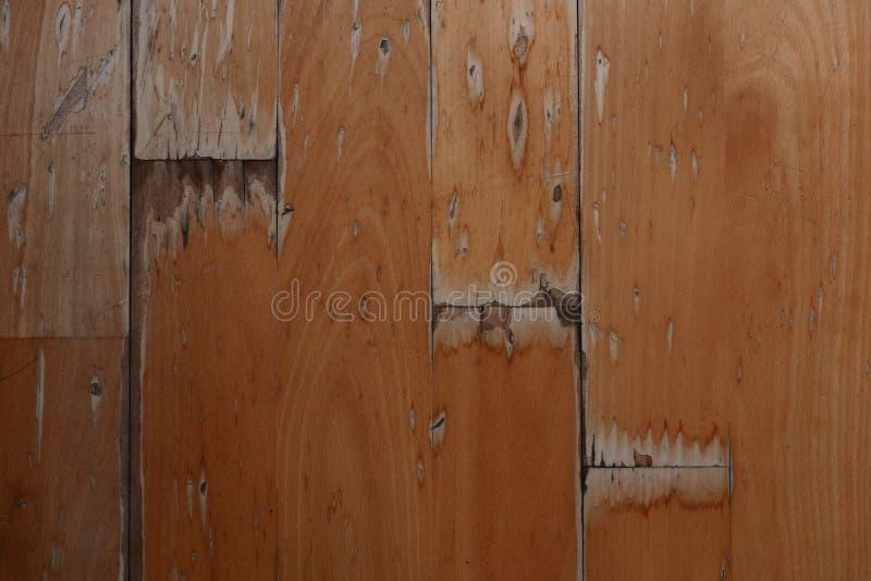 Damaged Wood Floor Stock Photo Image Of Indoor Floor 54720324