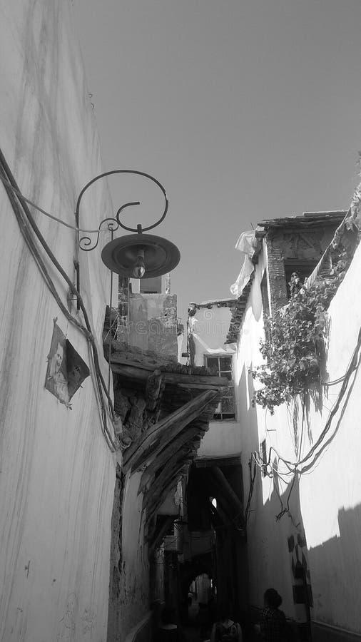 Damaskus-Schönheit lizenzfreie stockfotografie