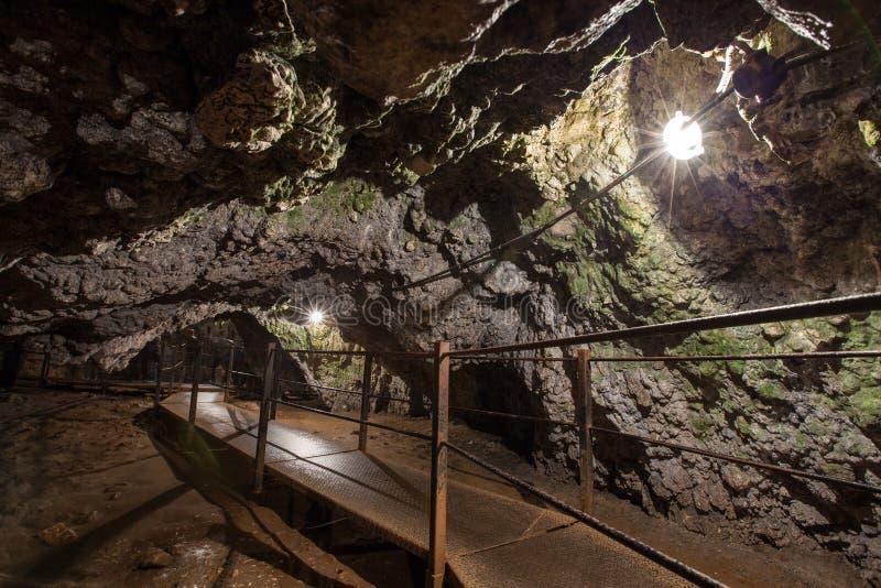 Dambovicioara grotta arkivfoton