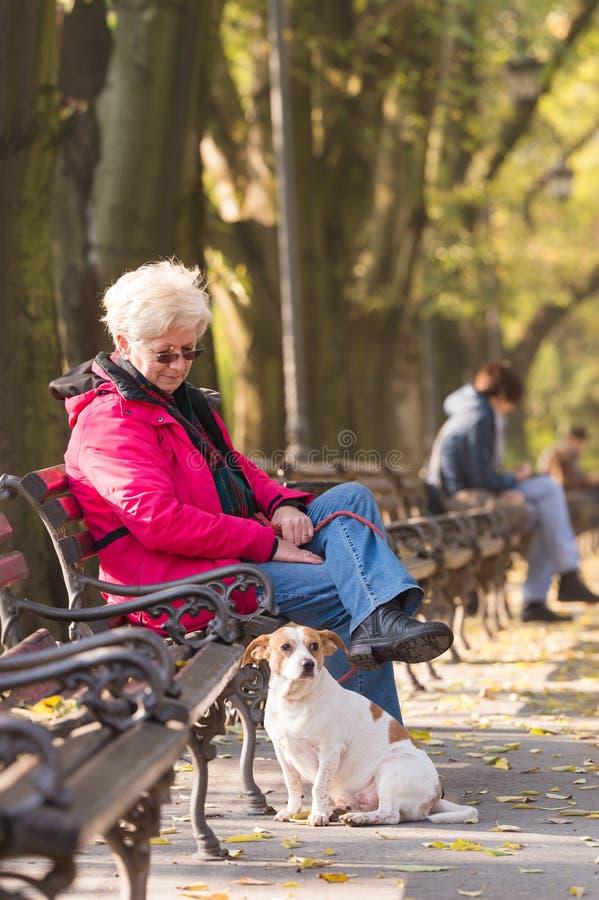 Dame âgée avec un chien photo stock