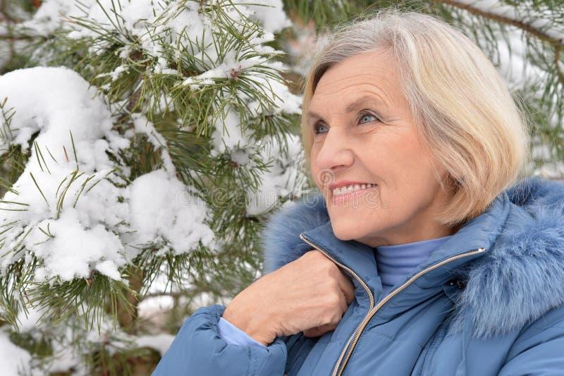 Dame âgée en hiver photos libres de droits
