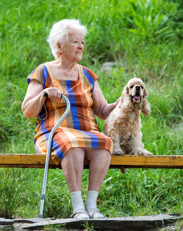 Dame âgée et son chien se reposant sur un banc photos stock