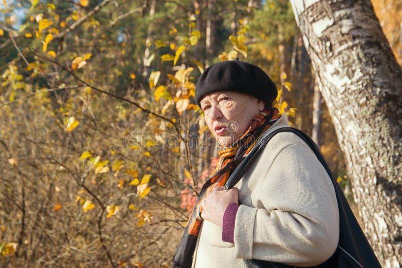 Dame âgée fâchée sent le dégoût en parc d'automne images libres de droits
