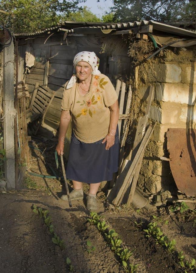 Dame âgée travaillant dans le jardin photos libres de droits