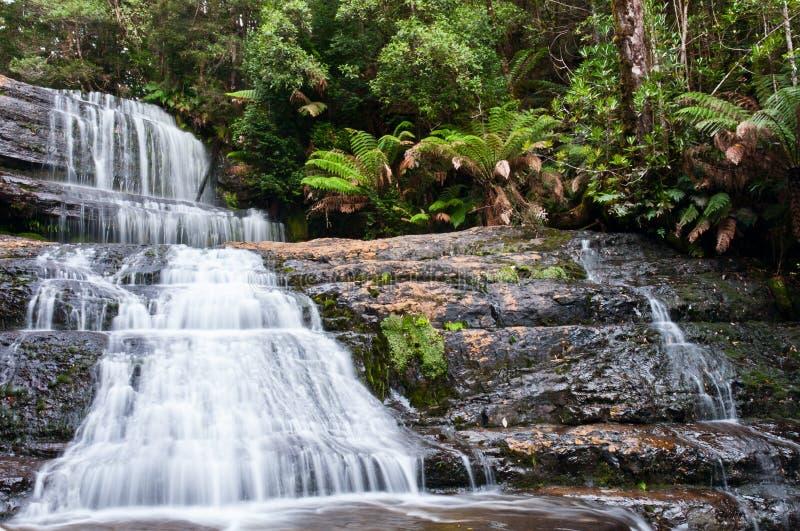 Dame Barron Falls, Het Nationale Park van het MT- Gebied stock afbeeldingen