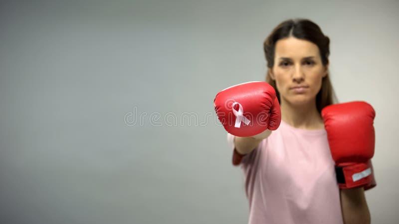 Dame in bokshandschoenen met roze lint, het vechten borstkanker, sociale voorlichting royalty-vrije stock foto's